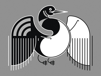 The Common Loon canada ontario black and white bird illustration loon