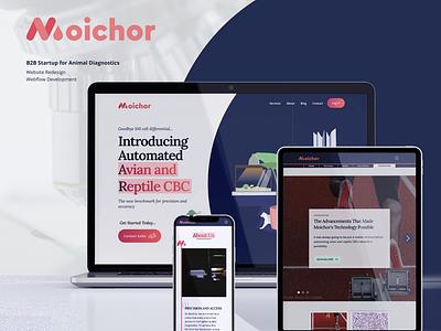 Moichor Inc. -- Website Redesign cms blog seo redesign behance figma webflow startup design web development web design ux ui dribbble