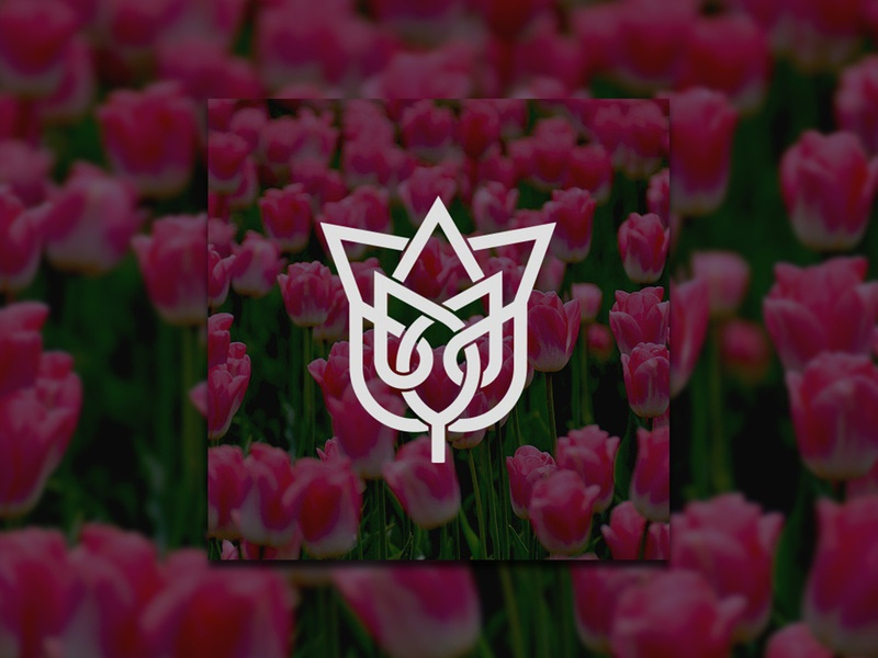 Tulip Flower Interlacing Line Logo branding identity minimal logo design tulip template simple nature monogram m logotype logo linear line flower design concept