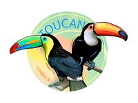 Toucans By K. Fairbanks