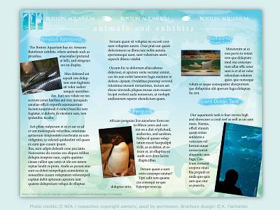 Aquarium Brochure page 2 by K. Fairbanks penguin fish aquarium brochure indesign vector illustrator print photoshop print design graphic design