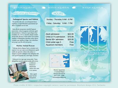 Aquarium Brochure page 1 by K. Fairbanks print design pagelayout software graphic design print pagelayout turtle seahorse fish aquarium brochure indesign
