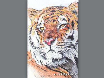 Tiger Yellow Eyes By K Fairbanks ballpoint pen art ballpoint pen drawing drawing pen wildlife nature animals animal tigers cats cat tiger