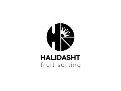 Halidasht fruit sorting logo design fruitlogo logodesinger  dribbbl