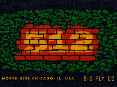 Big Fly ErnieBanks Reject procreate textture brick plants ivy wriggly field home run ernie banks chicago type baseball texture typography vintage retro illustration