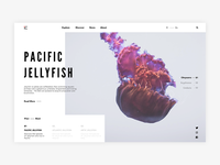 Jellyfish - Redesign concept