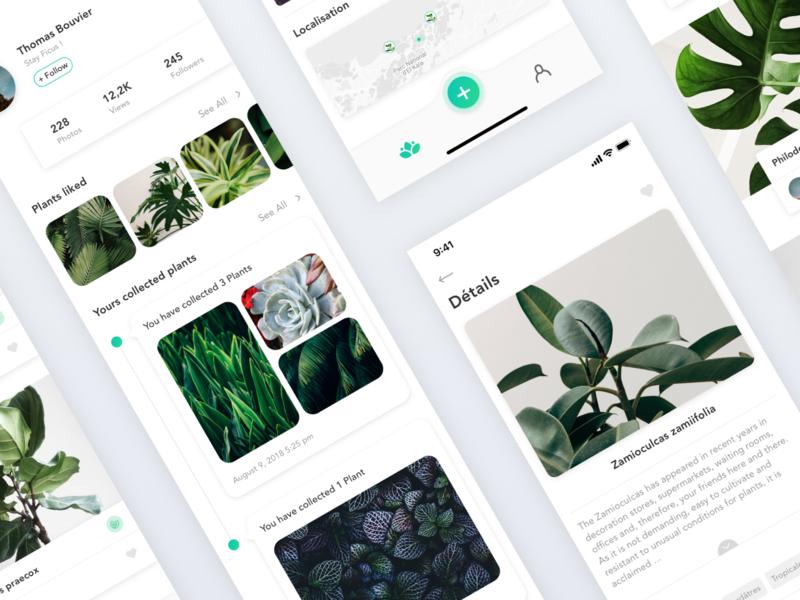 Plants - Plant Recognition App redesign concept concept profil feed health photo plants sketch gradient clean minimal redesign design interface app ui ux
