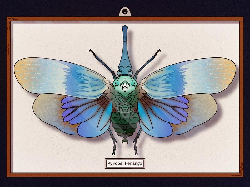 Pyrops Heringi Captured awesome insect nature affinity captured animal beetle illustration art