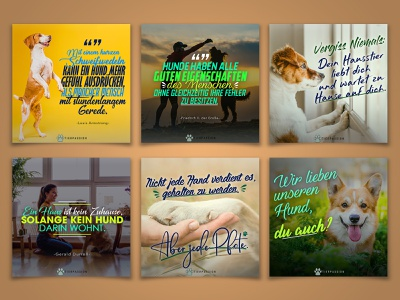 German Quotes for TIERPASSION creative photoshop quotes quote design quote typography design