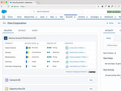 B2B Account Predictions Region inside Salesforce data analytics b2b visual design ux ui