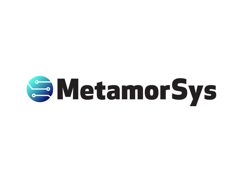 MetamorSys Logo 2