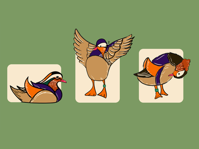 Mandarin duck brushes vector illustration vectorart vector duck mandarin duck