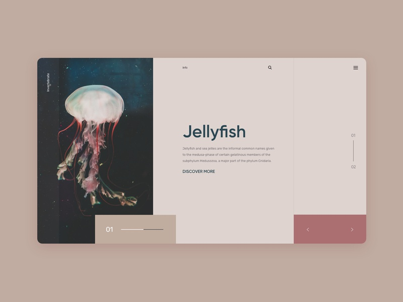 jellyfish slider jellyfish layout uidesign