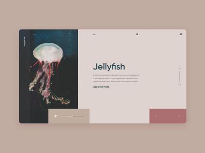 jellyfish slider jellyfish layout uidesign