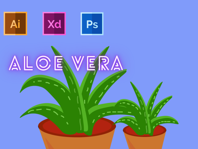 Day-11-Plant Illustration-Aloe Vera typography vector ux branding ui logo graphic design illustration flat design