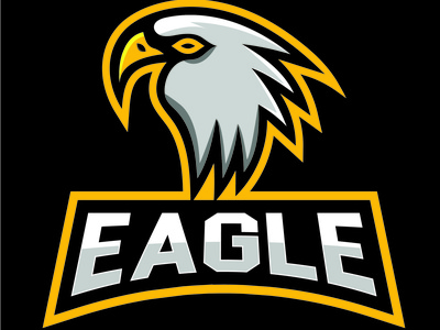 Eagle Mascot Logo eagle mascot brand identity branding design abstract logo birdlogo beauty best logo 2021 logo new design illustration logo 2021 illustrator eagle logo
