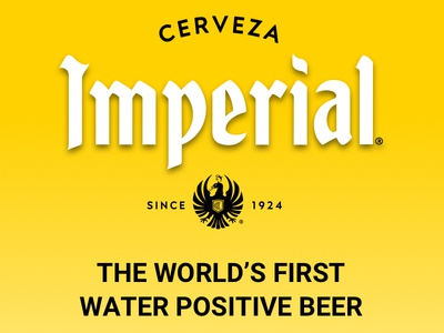Imperial - The World's First Water Positive Beer imperial modern website