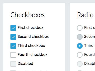 Design Guide Exploration radio checkbox form design guide style guide