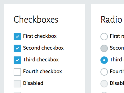 Design Guide Exploration radio checkbox form design guide style guide