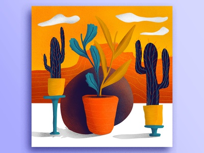 Cacti minimal sunset pots composition cactus desert ipad illustration ivi topp