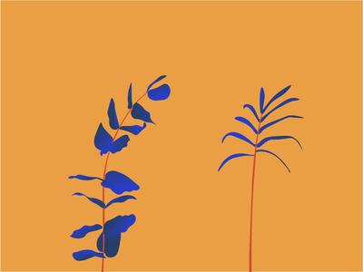 Eucalyptus + Palm illustration clean minimal design
