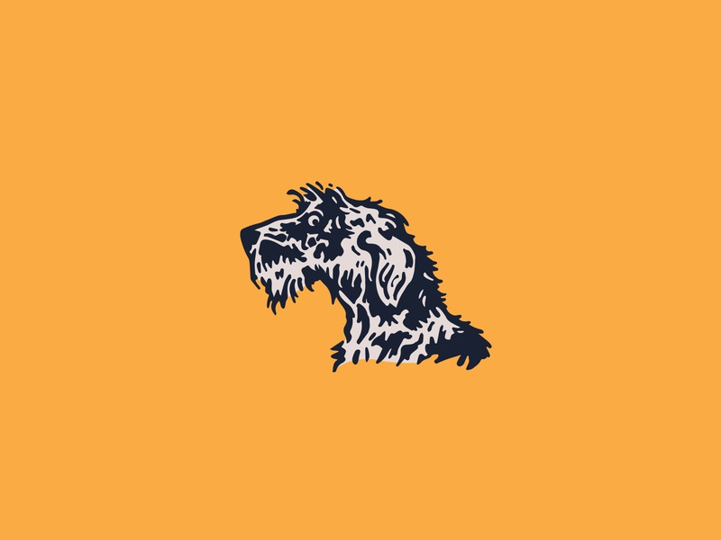 Irish wolfhound goofy woof happy fun brand identity branding logo design illustrator surprised dog illustration