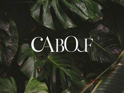 Logo Cabouf illustration flat typography logo vector branding design logo design