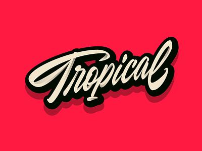 🌴 tropical ui logo illustration shadows illustrator letters design vector letter lettering