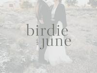 birdie + june logo