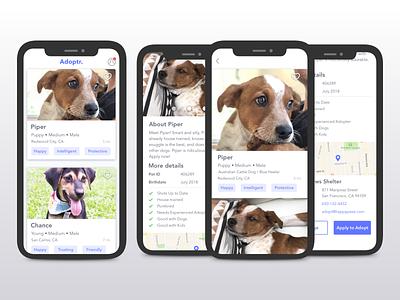 Fictitious pet adoption app cards visual design mobile app design mobile ui design interaction cards ui uidesign mobile app dog pet pet adoption