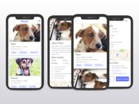 Fictitious pet adoption app
