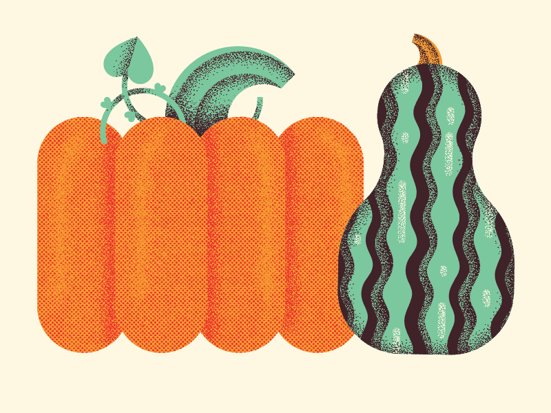 squash friends garden halloween pumpkin fall autumn food squash plant illustration
