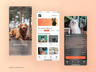 Pets shelter Mobile App pet minimal ui design flat design glassmorphism user flow web app design animal uxui ux application app