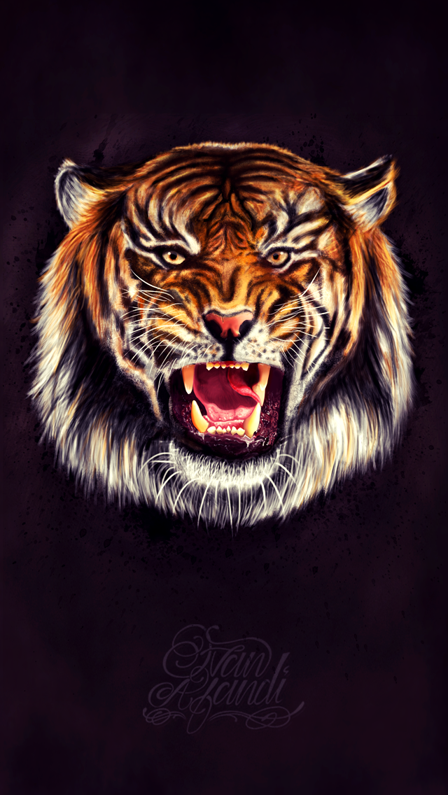 Dribbble Tiger Iphone 5 Wallpaper Png By Ivan Afandi