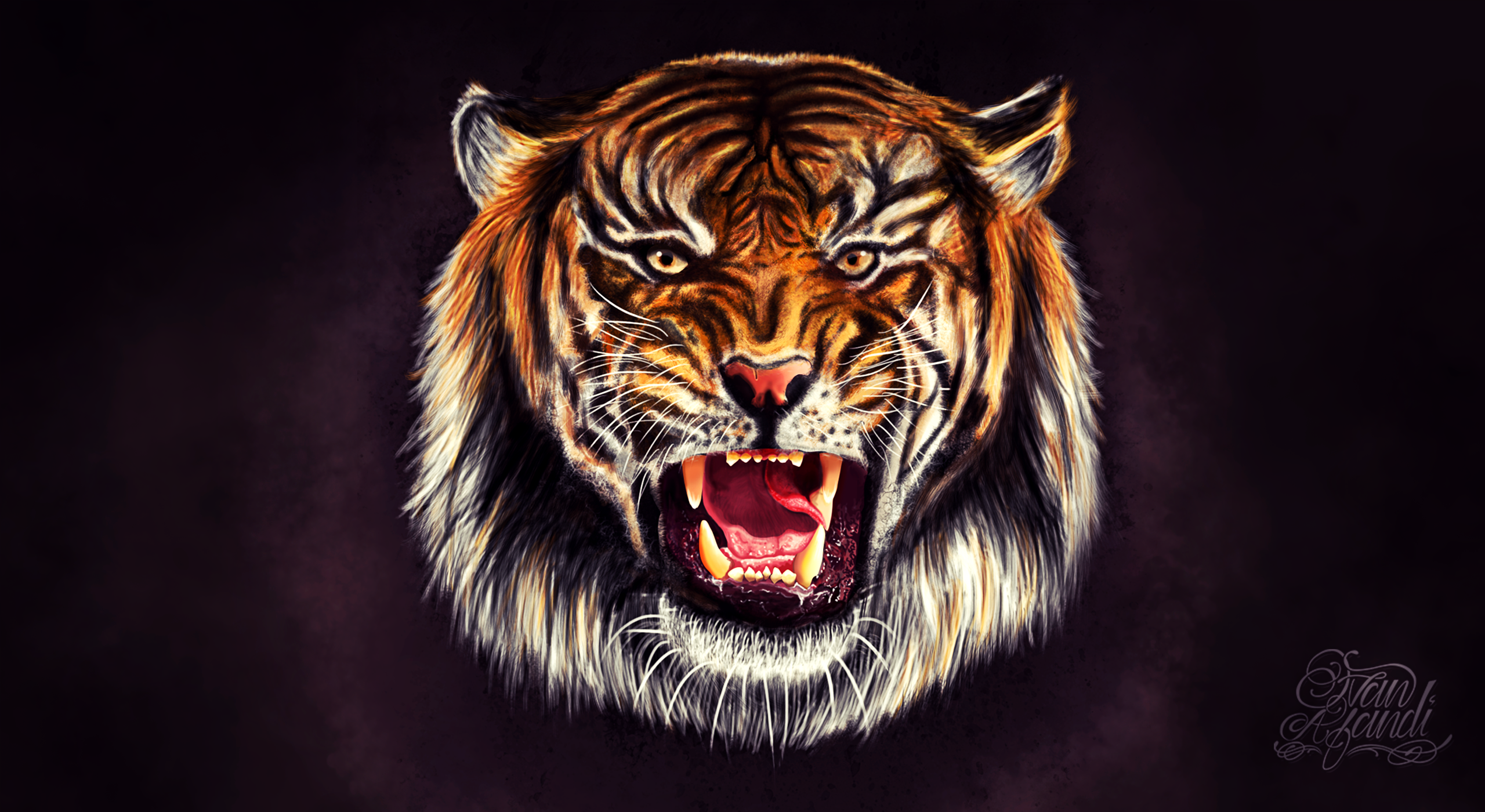 Bengal Tiger Face iPhone Wallpaper  HD Wallpapers