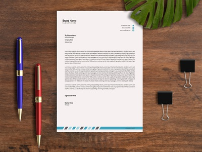 Letterhead Template illustration instagram business flyer flyers brochure design branding concept branding design branding letterhead template letterhead design