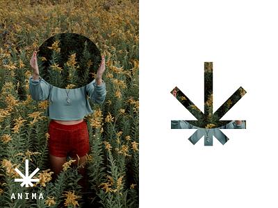Anima —Brand Exploration mirror oil cbd explore identity jung health self mind anima mark flower field hemp brand branding logo design dublin ireland