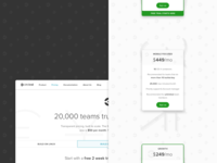 Pricing Page — Shipped