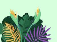 Freaky Leaves #003