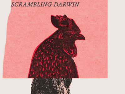 Scrambling Darwin collage dover illustration