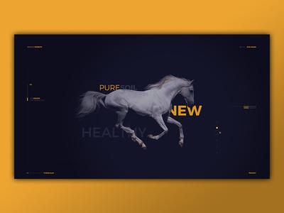 W.I.P. Portfolio Design - Servicii Website
