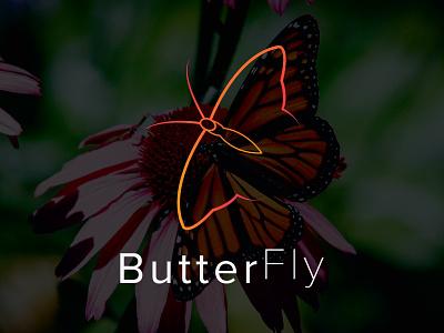 butter fly logo logodesign logo new butterfly