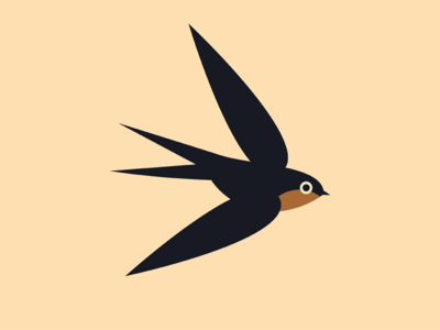 Swallow bird swallow vector illustration