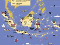 Indonesia Map Illustration