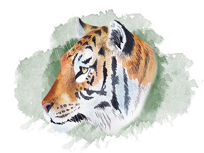 Wild tiger look marialetta illustration cat mixed media jungle watercolor tiger wip