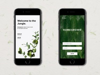 Concept - Homegrown App Login