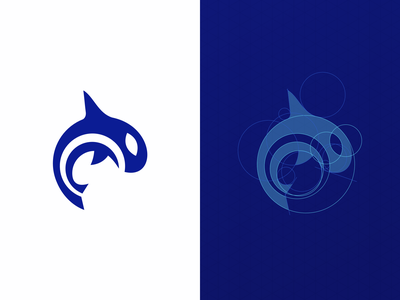 Orca Health Rebrand whale orca identity mark logo brand branding