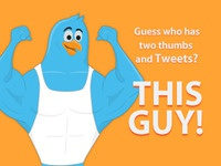 Weight Lifting Twitter bird