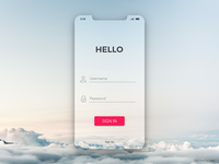 iPhone X Transparent Login