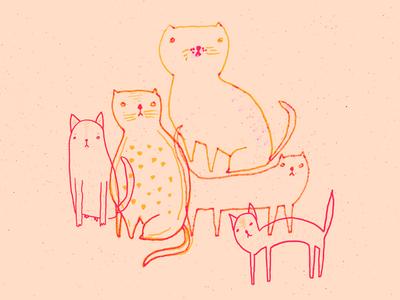 Cat Stacks